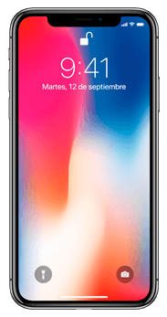 FRONTAL IPHONE X 64GB GRIS ESPACIAL